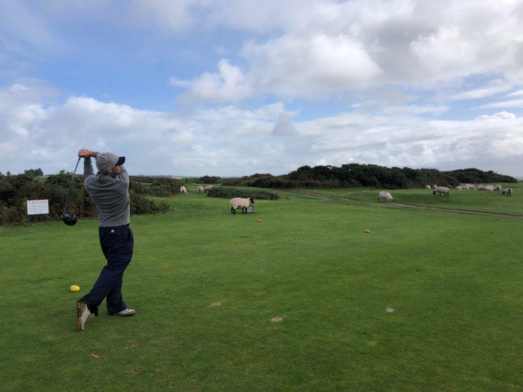 Southerndown GC, où golfeurs et moutons se côtoient